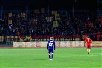 Матч «Арсенал» (Тула) – «Мордовия» (Саранск), Фото: 32