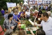 Праздник урожая в Новомосковске, Фото: 67