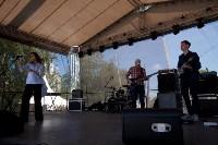 В Тульской области прошел фестиваль крапивы, Фото: 49