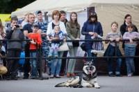 Школодром-2017, Фото: 115