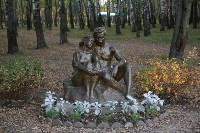 Благоустройство территории пруда в Комсомольском парке, Фото: 4