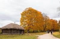 Золотая осень в Туле-2019, Фото: 17