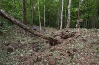 В лесу под Тулой поисковики нашли тайник с гранатами, Фото: 47