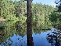 наедине с природой, Фото: 10