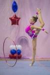 Соревнования по художественной гимнастике 31 марта-1 апреля 2016 года, Фото: 12