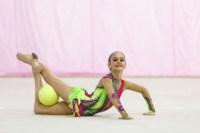 Межрегиональный турнир по художественной гимнастике — «Осенний вальс». 6-7 сентября 2014, Фото: 19