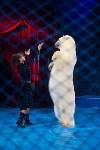 Тульский цирк, Фото: 94