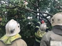 Спасатели ликвидируют последствия непогоды в Туле, Фото: 11