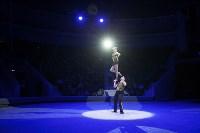 Туляков приглашают на новогоднее представление «Ёлка в цирке», Фото: 60