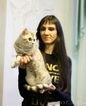 Выставка кошек, Фото: 14