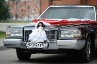 В Туле чествовали молодожёнов и супругов-юбиляров, Фото: 12