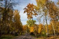 Золотая осень в Туле-2019, Фото: 66