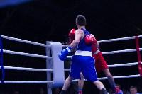 В Туле прошли финальные бои Всероссийского турнира по боксу, Фото: 43