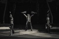 «Шоу Слонов» в Тульском цирке, Фото: 32