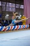 Соревнования по художественной гимнастике 31 марта-1 апреля 2016 года, Фото: 61