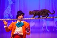 Театр кошек в ГКЗ, Фото: 67