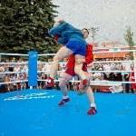 Турнир по боксу в Алексине, Фото: 26