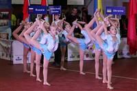 Тульская область впервые принимает чемпионат Европы по пауэрлифтингу, Фото: 10