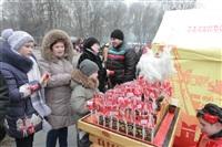 проводы Масленицы в ЦПКиО, Фото: 130