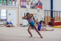 Тульские гимнастки готовятся к первенству России, Фото: 5