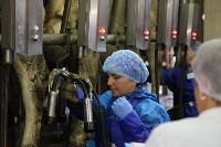 Конкурс профессионального мастерства среди операторов машинного доения коров, Фото: 49