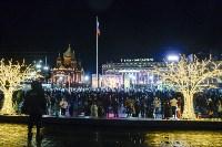 В Туле завершились новогодние гуляния, Фото: 48