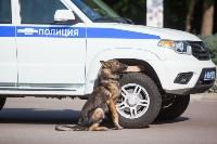 «Школодром-2018». Было круто!, Фото: 634
