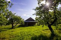 Летний день в Ясной Поляне, Фото: 10