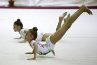 """Соревнования по художественной гимнастике """"Осенний вальс"""", Фото: 93"""