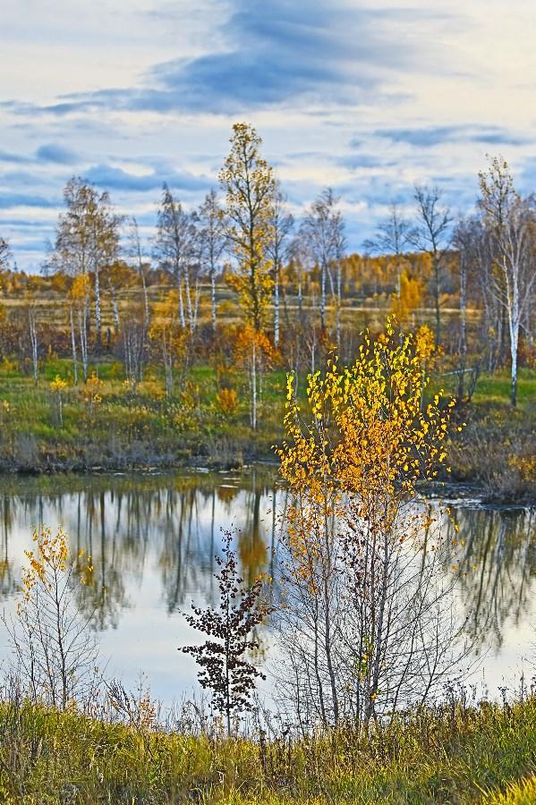 Осень (фото HDR. склеенное фотоаппаратом) Свет мой, озерце, скажи! Да, всю правду доложи! Я ль  из всех сезонов года Даже, если непогода Краше всех своей листвою Цвета солнца, золотою? (текст авторский)