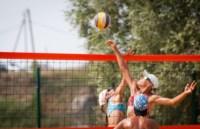Пляжный волейбол в Барсуках, Фото: 53