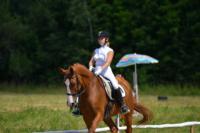 В Ясной поляне стартовал турнир по конному спорту, Фото: 129