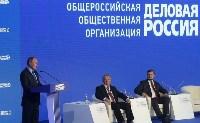 Алексей Дюмин принял участие в съезде «Деловой России», Фото: 1