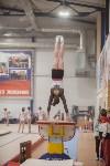 Первенство ЦФО по спортивной гимнастике, Фото: 203
