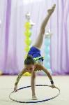Соревнования «Первые шаги в художественной гимнастике», Фото: 40