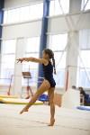 Спортивная гимнастика в Туле 3.12, Фото: 133