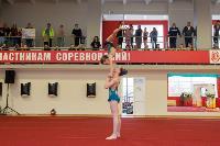 Спротивная акробатика, Фото: 73