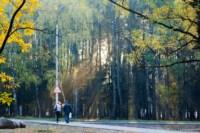 Центральный парк, утро, осень, Фото: 27