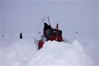 Репортаж с Северного Полюса, Фото: 14
