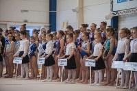 Первенство ЦФО по спортивной гимнастике, Фото: 14