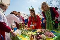 Фестиваль Сад Палисад луковый расклад, Фото: 41