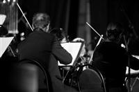 Би-2 с симфоническим оркестром в Туле, Фото: 57