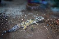 Аквакласс, Фото: 7