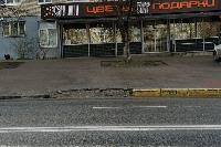 Незаконная торговля на Фрунзе и плохая уборка улиц Тулы, Фото: 6