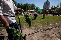 В Тульской области прошел фестиваль крапивы, Фото: 27