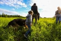 Овчарка вернулась домой через семь месяцев после пропажи, Фото: 15