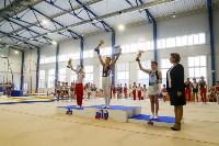 Спортивная гимнастика в Туле 3.12, Фото: 62