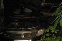 Возгорание автомобилей в ночь на 17 мая, Фото: 5