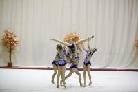 """Соревнования по художественной гимнастике """"Осенний вальс"""", Фото: 149"""