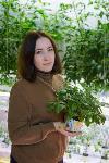 сити-ферма, Фото: 5